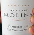 Castillo de Molina - Carmenere