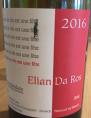 Le Vin Est Une Fête