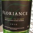 Saint-Ronain Floriance Picpoul de Pinet