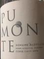 Pumonte