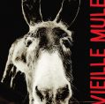 Vieille Mule By Jeff Carrel